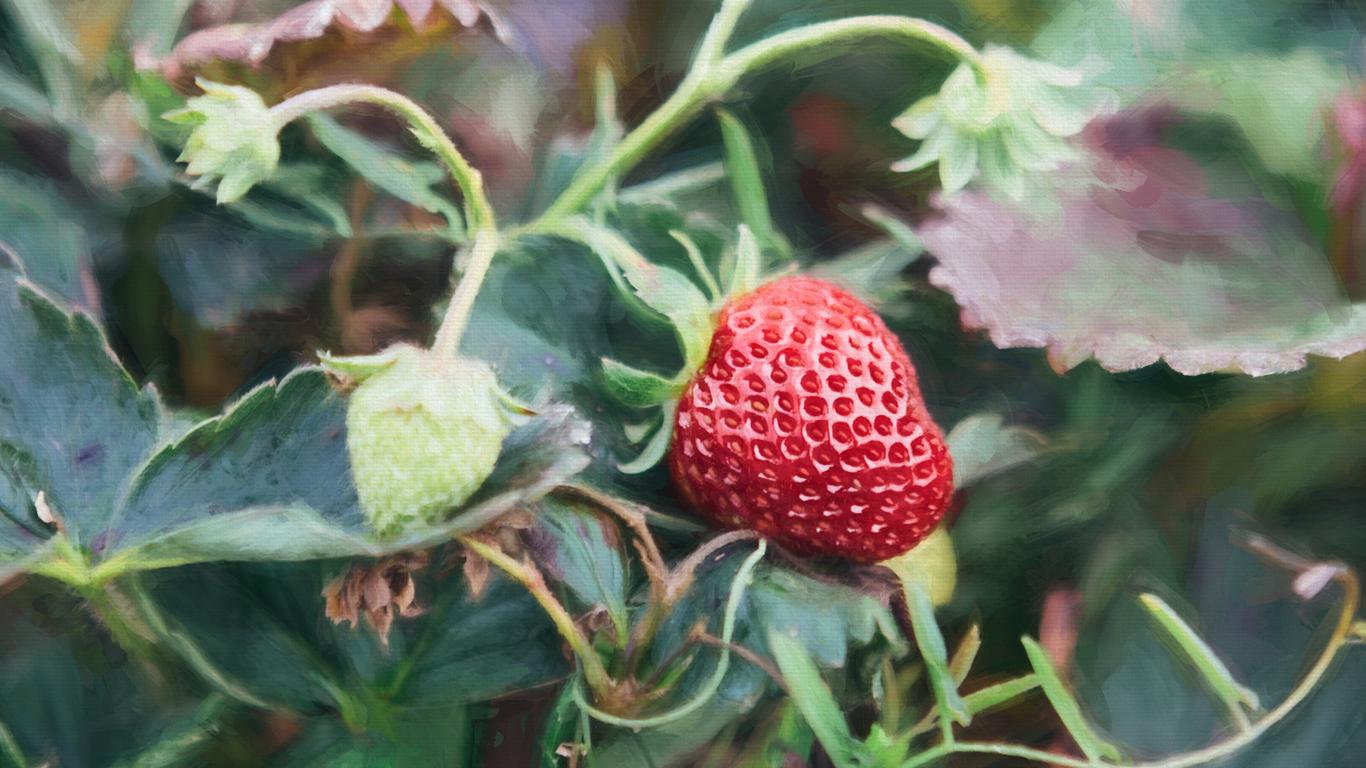 _sm32287-crop